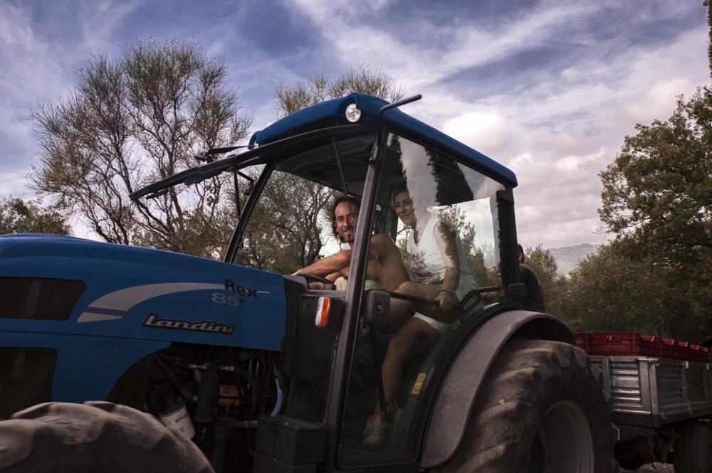 Sul trattore per il trasporto casse d'uva
